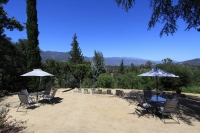 ojai-retreat-wedding-venue-3