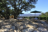 ojai-retreat-wedding-venue